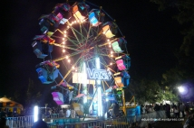 Vans Wheel of Fortune Corona Capital 13
